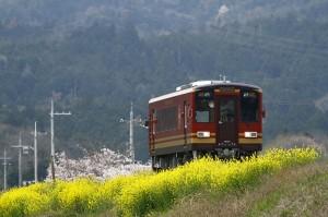 信楽高原鐵道春の景色
